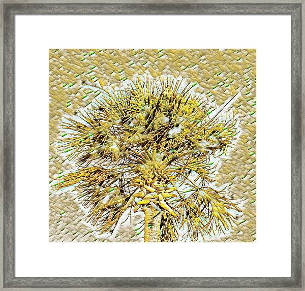 Gullah Palm Framed Print