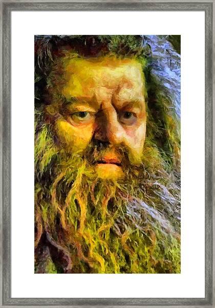 Hagrid Framed Print