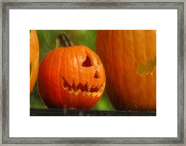 Halloween Pumpkin Framed Print