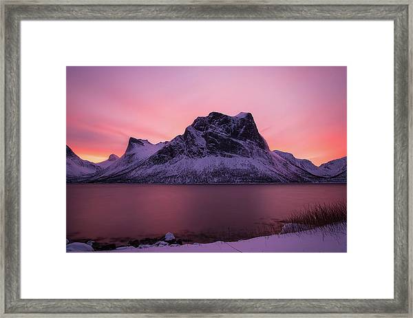 Halo In Pink Framed Print