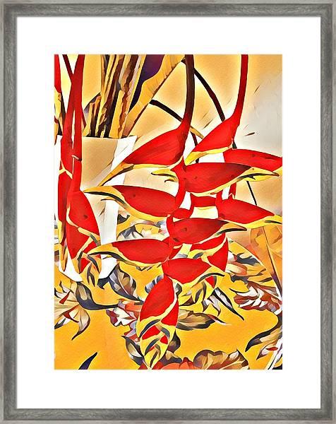 Halyconia Bouquet In Orange Framed Print