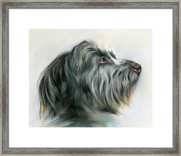 Hamish The Wolfhound Framed Print