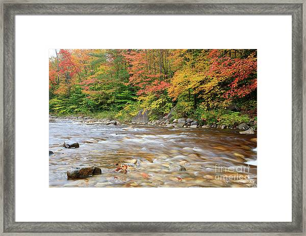 Hancock Branch - White Mountains New Hampshire  Framed Print