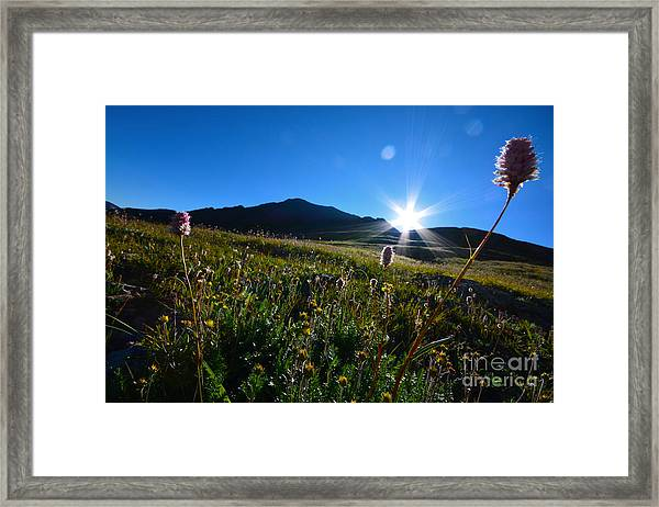 Framed Print featuring the photograph Handies Peak Sunrise by Kate Avery