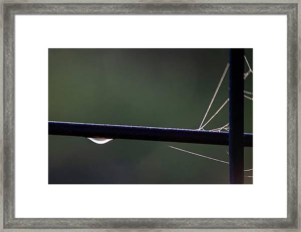 Hanging On Framed Print