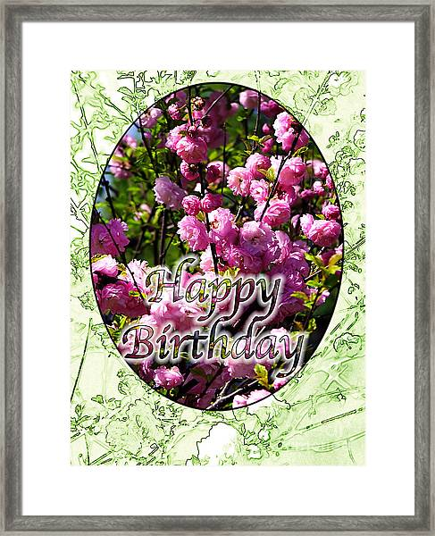 Happy Birthday - Greeting Card - Almond Blossoms No. 1 Framed Print by Sascha Meyer