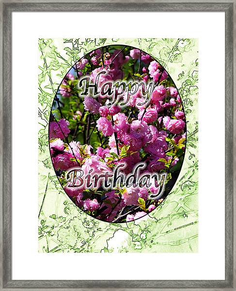 Happy Birthday - Greeting Card - Almond Blossoms No. 2 Framed Print by Sascha Meyer