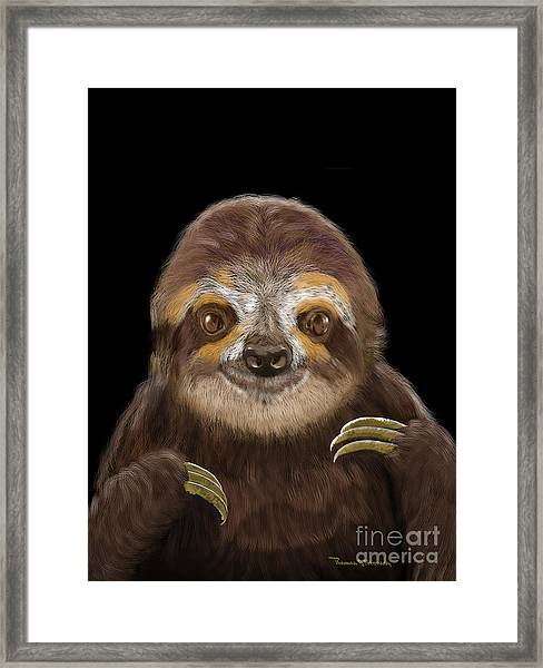 Happy Three Toe Sloth Framed Print
