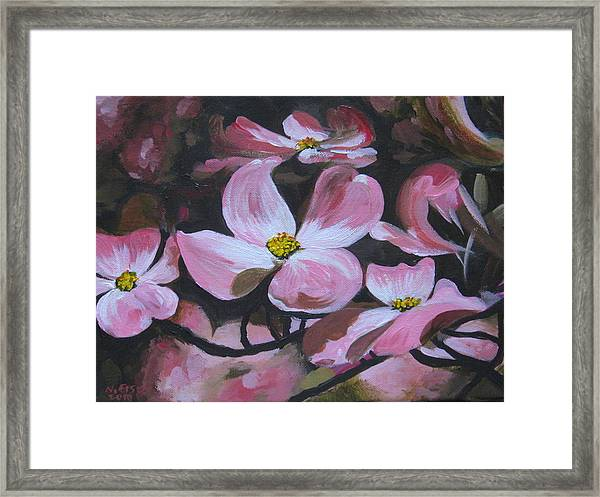 Harbinger Of Spring Framed Print