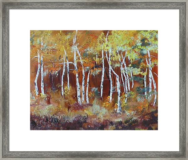 Harding Way  Aspens Dancing Framed Print