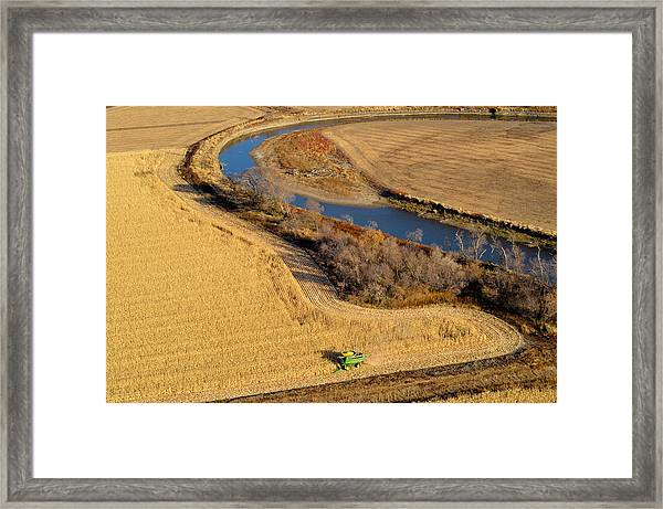 Harvest Framed Print
