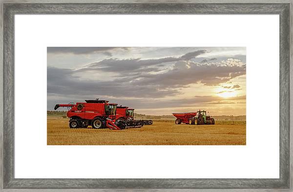 Harvest Delayed Framed Print