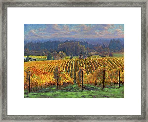 Harvest Gold Framed Print