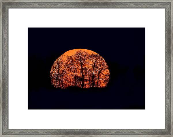 Framed Print featuring the photograph Harvest  Moon Rising by William Jobes