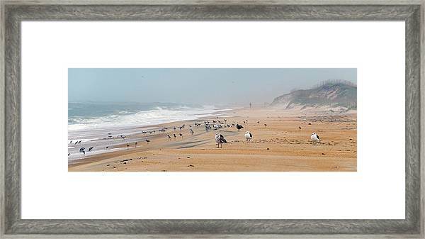 Hatteras Island Beach Framed Print