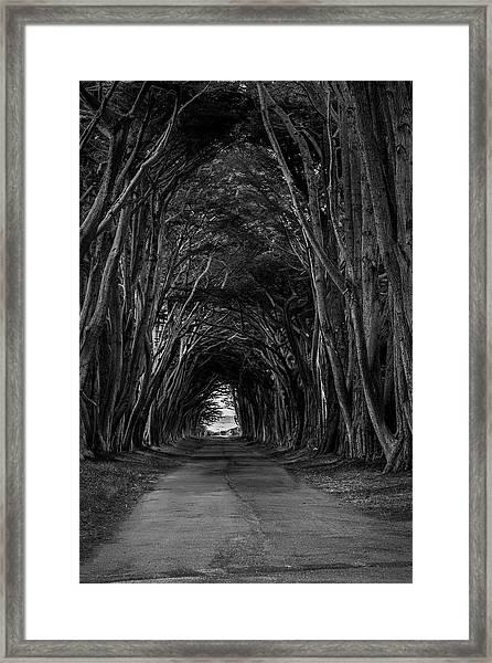 Haunting II Framed Print