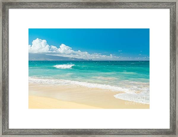 Hawaii Beach Treasures Framed Print