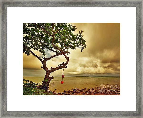 Hawaii Beach Tree Framed Print