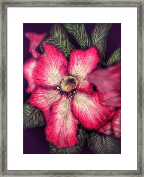 Hawaii Flower Framed Print