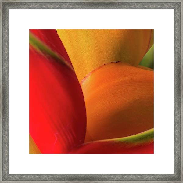 Hawaii Mn6414 Framed Print