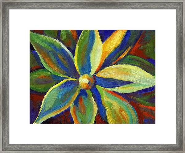 Hawaiian Plant Framed Print