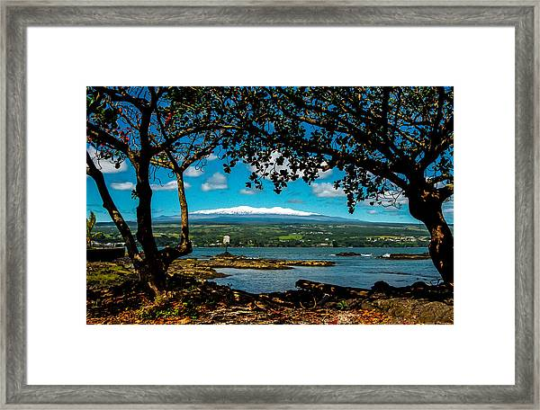 Hawaiian Snow Framed Print