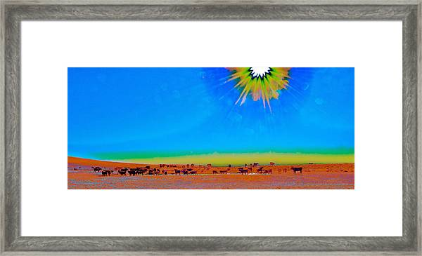 Hay Meadow To Water Framed Print