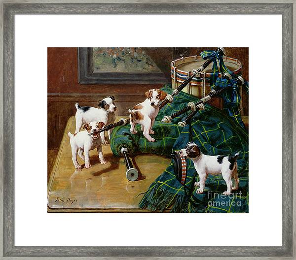 He Who Pays The Piper Calls The Tune Framed Print