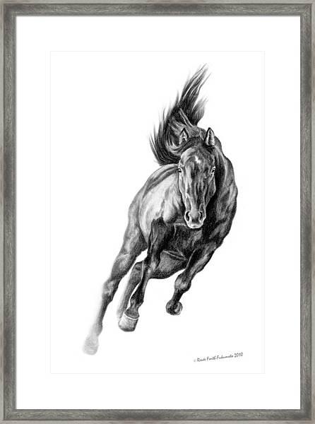 Head On Framed Print by Renee Forth-Fukumoto