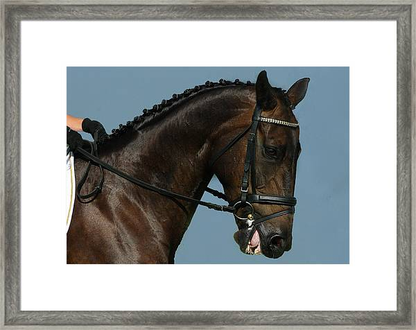Head Shot Framed Print