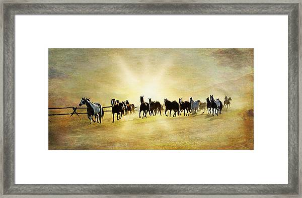 Headed Home Ll Framed Print