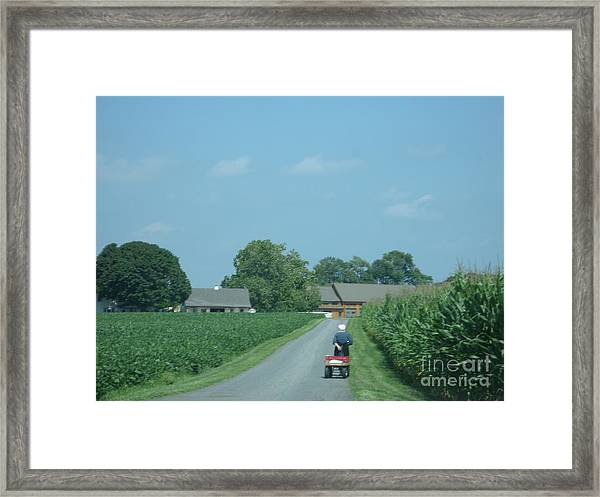 Heading Home From The Market Framed Print