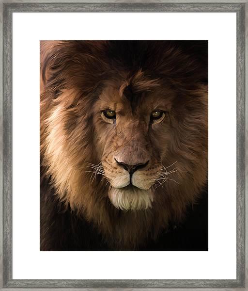 Heart Of A Lion - Wildlife Art Framed Print