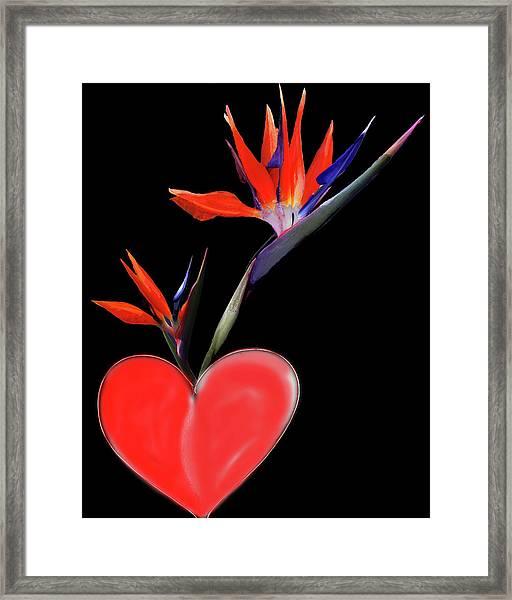 Heart  Of Paradise Framed Print