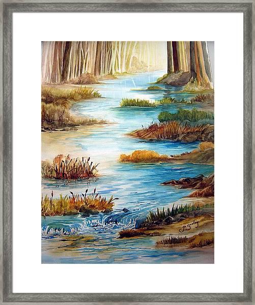 Heavens Gift Framed Print
