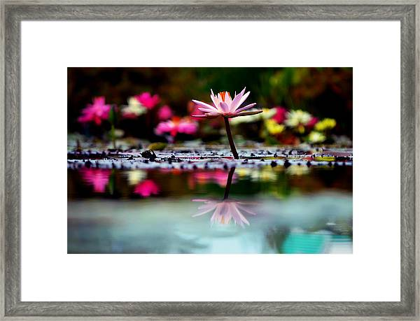 Heaven's Masterpiece Framed Print