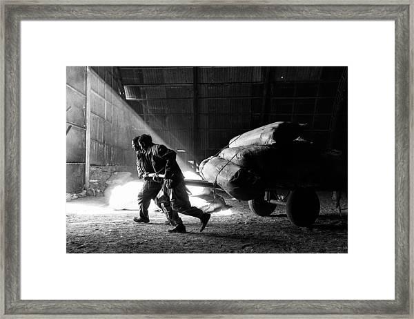 Heavy Load Framed Print by Damon Lynch