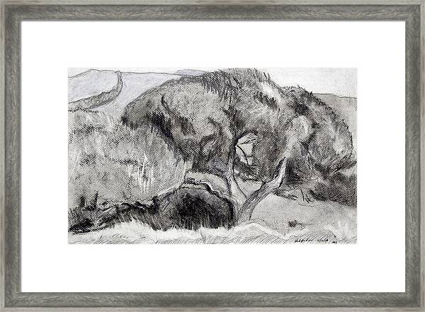 Hedge Row Framed Print