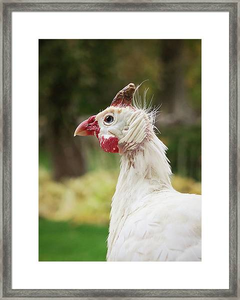 Hello Neighbor Framed Print