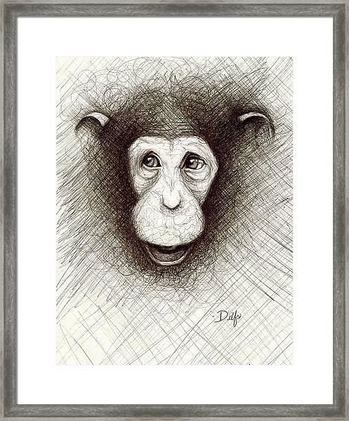 Hello The Chimp Framed Print