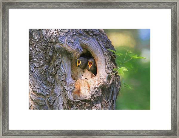 Hello - Anybody Out There  Framed Print