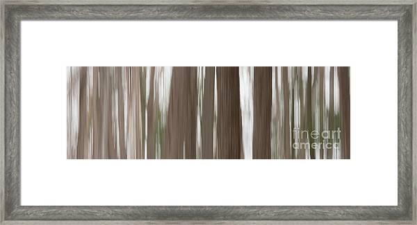 Hemlock Grove Framed Print