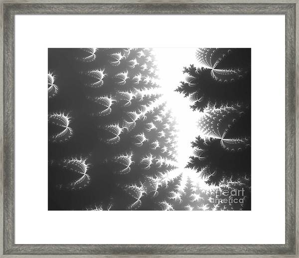 Hemp Dreams Framed Print