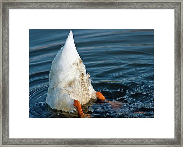 Here Is What I Think Framed Print