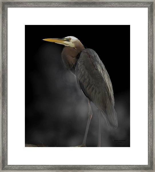Heron On A Foggy Morning Framed Print