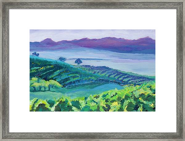 Heuningland Framed Print