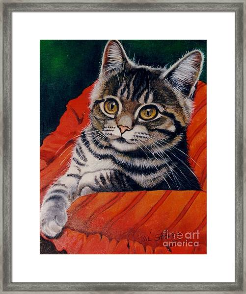 Hi There Framed Print by Val Stokes