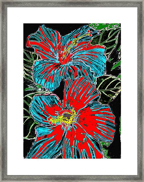 Hibisc Framed Print