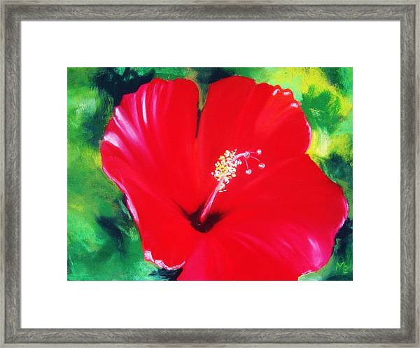 Hibiscus 2 Framed Print