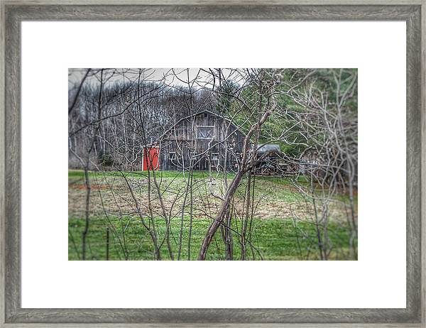 0019 - Hidden Capac Grey Framed Print